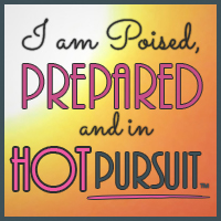 badge_hotpursuit